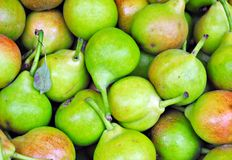 Pears Fund Stock Photos