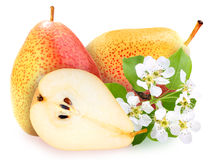Pears with green leaf and flowers Royalty Free Stock Photos