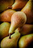 Pears group on dark background. Pear group on dark background Stock Photos