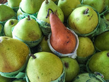 Pears grouped together Royalty Free Stock Images