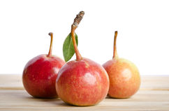 Pears  in a grouping on wooden table. Three small pears  in a grouping on wooden table Royalty Free Stock Image