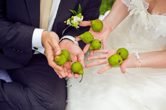 Pears in the hands Royalty Free Stock Image