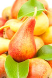 Pears heap Stock Photos