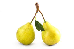 Pears on isolated Royalty Free Stock Image