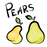 Pears isolated. Pear fruit label. Hand drawn watercolor set. Royalty Free Stock Images