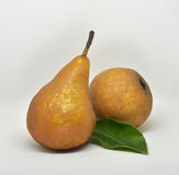 Pears isolated on white. Background Stock Photography