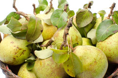 Pears with leaves in a basket Royalty Free Stock Photos