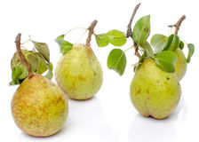 Pears with leaves Royalty Free Stock Photo