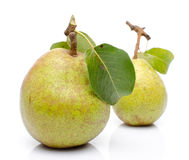 Pears with leaves Stock Photography