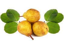 Pears and leaves Stock Photos