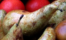 Pears in a Market. The pear is any of several tree and shrub species of genus Pyrus /ˈpaɪrəs/, in the family Rosaceae. It is also the name of the royalty free stock photography