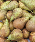 Pears on a market stall Royalty Free Stock Photo