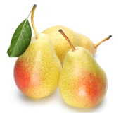 pears mogna tre Royaltyfria Bilder