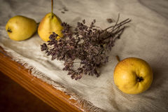 Pears and oregano Stock Images