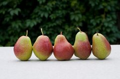 Pears på tabellen Royaltyfri Foto
