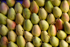 Pears Pile. A pile of pears on the market stock image