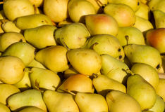 Pears on pile Stock Image