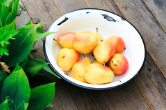 Pears in a plate. Royalty Free Stock Photography