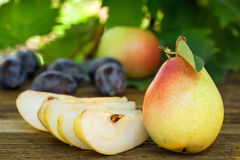 Pears, plums and apples Stock Photos