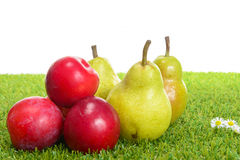Pears and plums Stock Photo