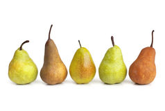 Pears in a Row Royalty Free Stock Photography