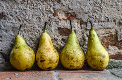 Pears in a row. Four pears in a row sitting up against a wall Stock Images