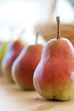 Pears in a row Stock Photography