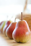 Pears in a row Royalty Free Stock Image