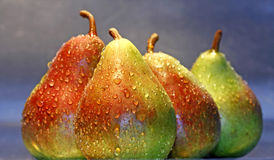 Pears on a row. Bunch of wet juicy pears aligned on a gray background Stock Image