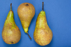 Pears in a row on a blue background Royalty Free Stock Image