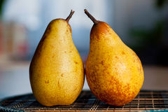 Pears on the table. Royalty Free Stock Image
