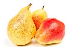 pears tre Royaltyfria Foton