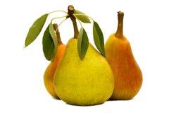 pears tre Royaltyfria Bilder