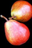 Pears. Stock Image