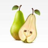Pears vector illustration