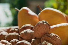 Pears and walnuts Royalty Free Stock Photos