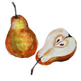 Pears watercolor Stock Image
