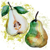 Pears watercolor Stock Images