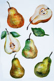 Pears watercolor Royalty Free Stock Image