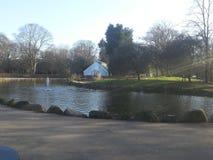 Pearson Park Lake Stockbilder