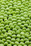 Peas. Background made of wet peas Royalty Free Stock Photos