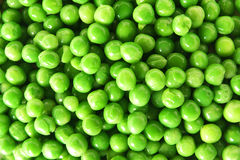 Peas  Stock Images