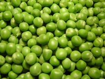 Peas. Image of some fresh peas Stock Image