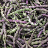 Peas. For sale at a market Stock Photography
