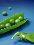Peas 5. Studio shot of peas with pods Royalty Free Stock Photo
