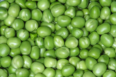 Peas. Green peas Royalty Free Stock Images