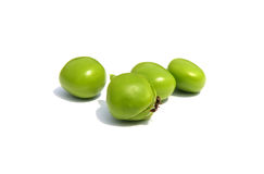 Peas and ant Royalty Free Stock Photos