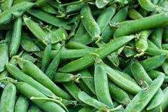 Peas, background. Royalty Free Stock Photos