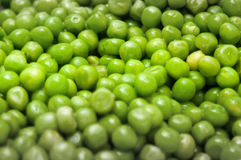 Peas background. For a tasteful dish Royalty Free Stock Images