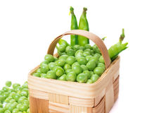 Peas in a basket Stock Image